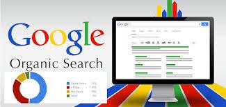 Organic Search Là Gì? Vai Trò Của Organic Search